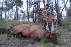 Bitter-Bull-1024x768