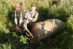 Elk with Decoy1