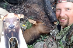 John-Anderson-Elk-e1513183348715-768x1024