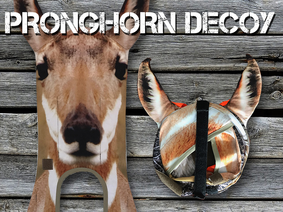 antelope-pronghorn-stalker-featurebox