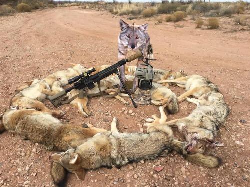 how to catch a predator decoy