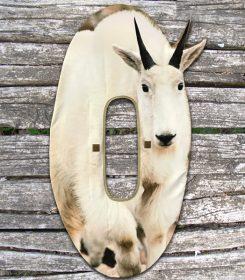 Mountain-Goat-Stalker-Decoy