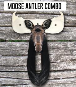moose-stalker-combo-img