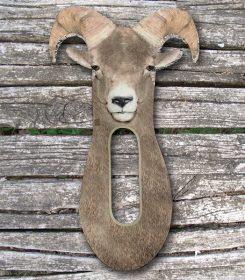 bighorn-sheep-stalker-img