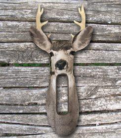 mule-deer-buck-prod-img